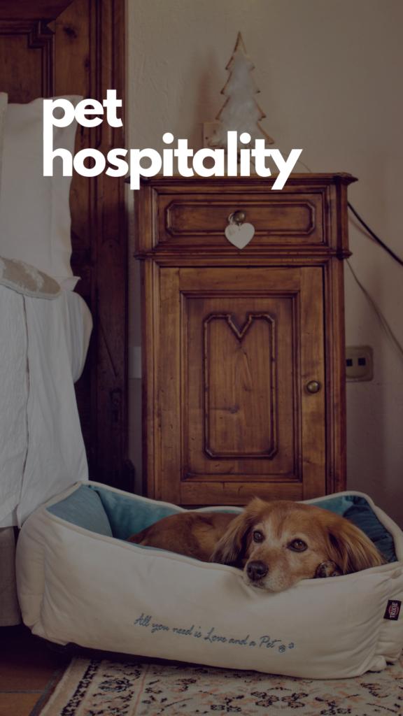 Pet Hospitality